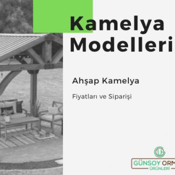 Kamelya Modelleri - Ahşap Kamelya