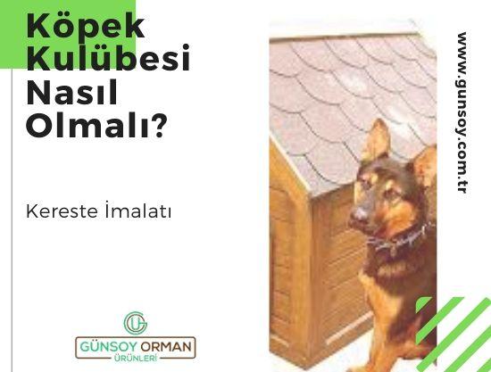 Köpek Kulübesi Nasıl Olmalı?